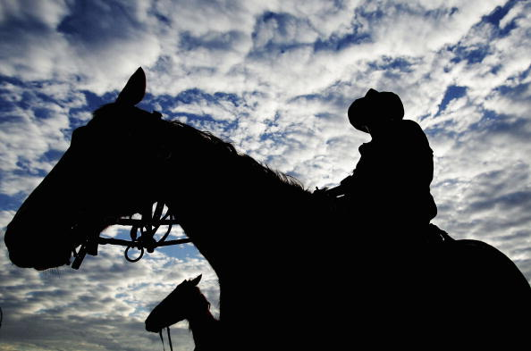 Horse「Great Australian Cattle Drive Nears Completion」:写真・画像(14)[壁紙.com]