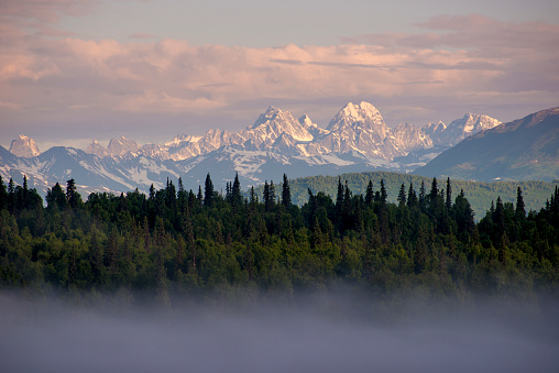 Alpenglow「A thin layer of fog blanketed over evergreens with mountains in the background at sunset. Denali National Park, Alaska, USA.」:スマホ壁紙(12)