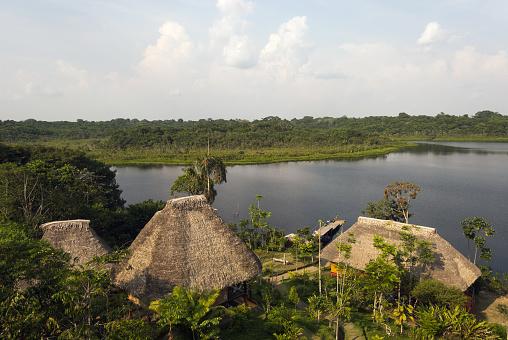 Amazon Rainforest「Lodge in Amazon rainforest」:スマホ壁紙(2)