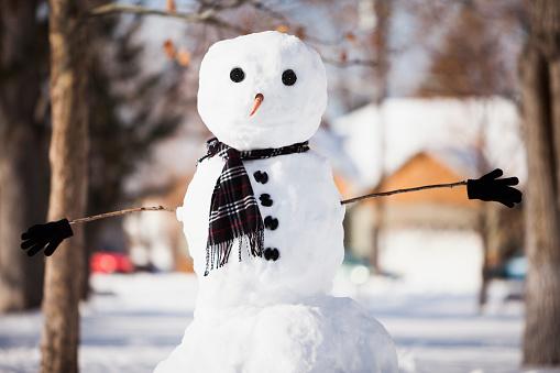 Snowman「Snowman wearing scarf outdoors」:スマホ壁紙(3)