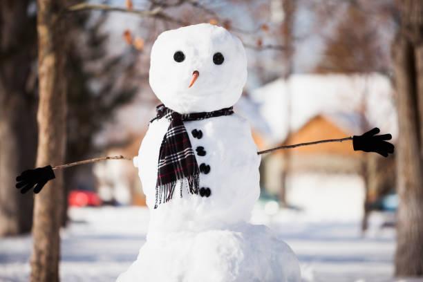 Snowman wearing scarf outdoors:スマホ壁紙(壁紙.com)