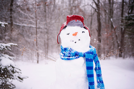 雪だるま「Snowman wearing a hat and scarf」:スマホ壁紙(4)