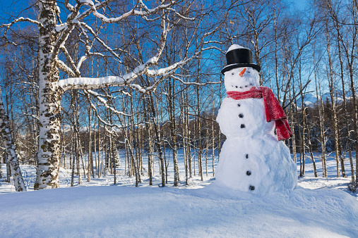雪だるま「Snowman wearing a red scarf and black top hat in a wooded park with snow covered mountains and blue sky in the background」:スマホ壁紙(1)