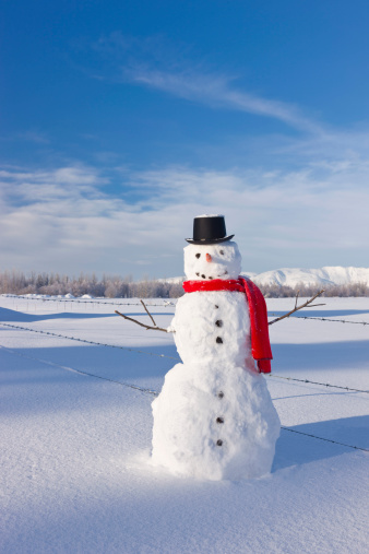 雪だるま「Snowman Wearing A Red Scarf And Black Top Hat Standing In Fresh Snow On A Sunny Day」:スマホ壁紙(2)