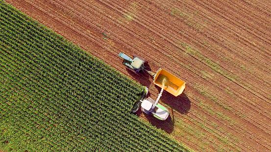 農業「飼料やエタノール用トウモロコシを収穫する農機」:スマホ壁紙(15)