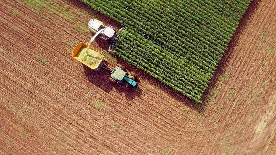 田畑「Farm machines harvesting corn for feed or ethanol」:スマホ壁紙(7)