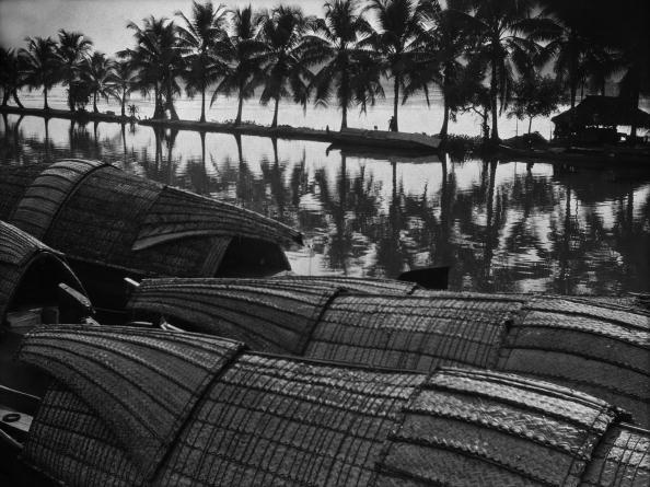 Lagoon「Quilon Backwater」:写真・画像(8)[壁紙.com]