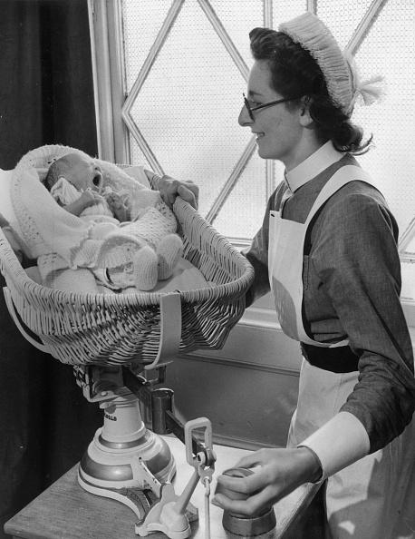 Basket「Featherweight Baby」:写真・画像(14)[壁紙.com]