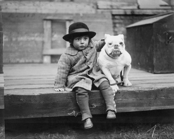 動物「Best Friends」:写真・画像(2)[壁紙.com]