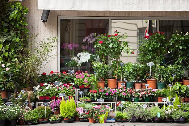 Flower Shop in Paris:スマホ壁紙(壁紙.com)