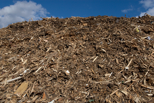 Recycling「Recycling garden and wood waste, Peterborough, Cambridgeshire, UK」:写真・画像(8)[壁紙.com]