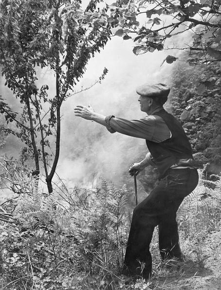 Mountain「Etna Eruption」:写真・画像(7)[壁紙.com]