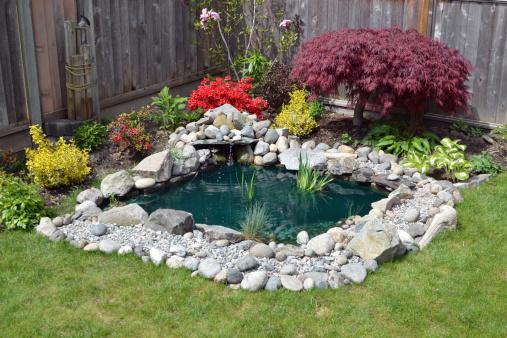 Ornamental Garden「Backyard Pond」:スマホ壁紙(11)