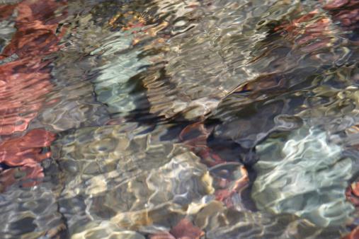 Shallow「Soothing River Rocks」:スマホ壁紙(11)