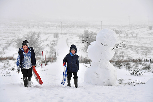 Snow「First Snow of Winter Hits Northern Ireland」:写真・画像(1)[壁紙.com]