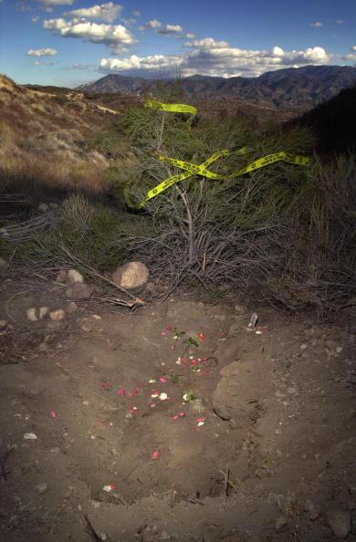 Shallow「Murdered Los Lobos Wife Found」:写真・画像(15)[壁紙.com]