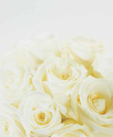 花「High Section View of a Bunch of White Roses」:スマホ壁紙(11)