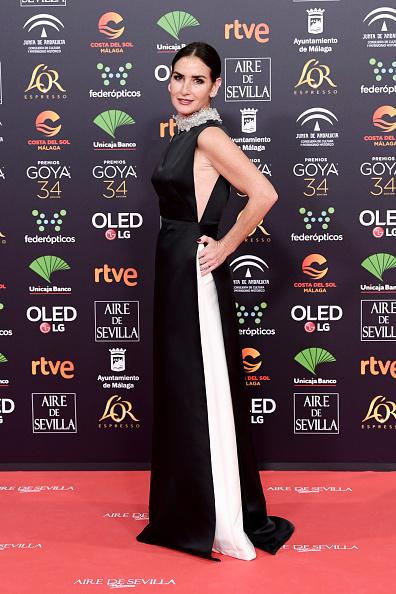Jose Lopez「Goya Cinema Awards 2020 - Red Carpet」:写真・画像(9)[壁紙.com]