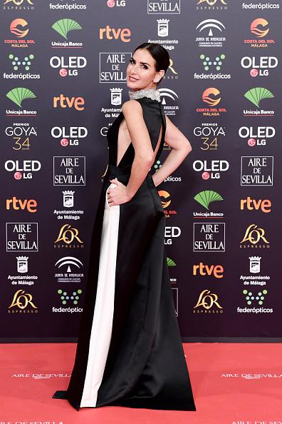 Jose Lopez「Goya Cinema Awards 2020 - Red Carpet」:写真・画像(5)[壁紙.com]