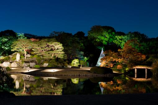 紅葉「日本の秋の夜の眺め」:スマホ壁紙(3)