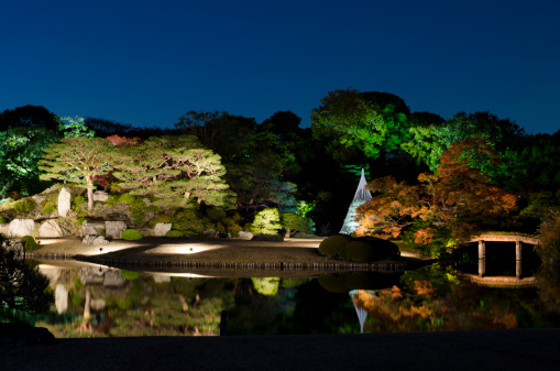 Japanese Maple「Night view of japanese autumn」:スマホ壁紙(11)