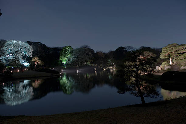Night view of Japanese Rikugi-en Garden:スマホ壁紙(壁紙.com)