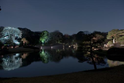 観賞用庭園「Night view of Japanese Rikugi-en Garden」:スマホ壁紙(14)