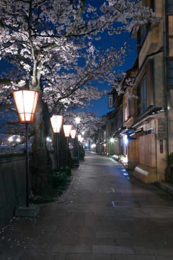 夜桜「Night View of Kazue-machi Chaya District, Kanazawa, Ishikawa, Japan」:スマホ壁紙(3)