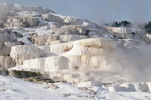 Mammoth Hot Springs「Winter Freezes Hot Springs」:スマホ壁紙(0)