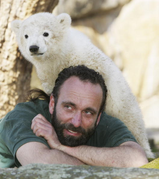 Bear Cub「Polar Cub Knut Draws Eager Public」:写真・画像(7)[壁紙.com]