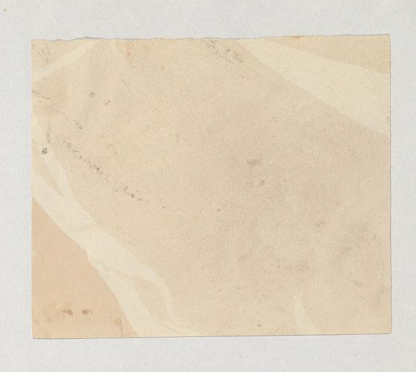 Specimen Holder「Crape」:写真・画像(6)[壁紙.com]