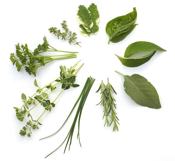 Circular arrangement of various herbs, isolated on white:スマホ壁紙(壁紙.com)