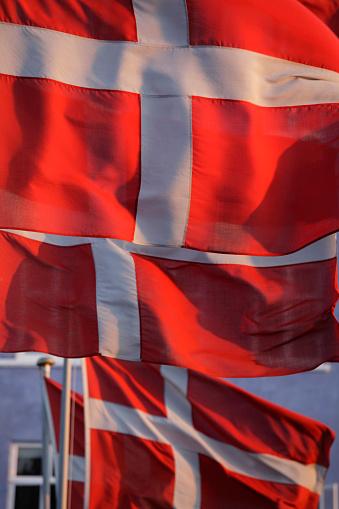 Danish Culture「Flags of Denmark」:スマホ壁紙(9)