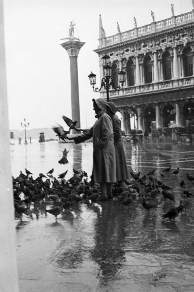静かな情景「Venetian Rain」:写真・画像(2)[壁紙.com]