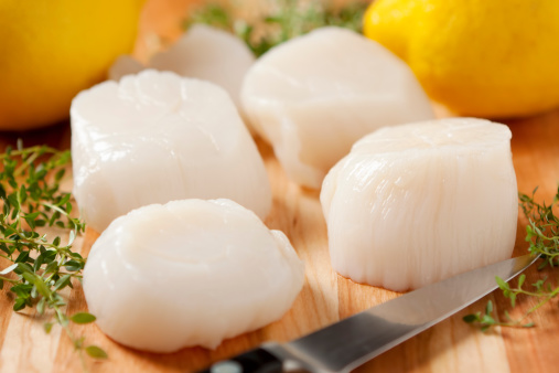 Scallop「Fresh sea scallops with knife and lemon」:スマホ壁紙(10)