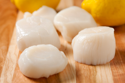 Scallop「Fresh sea scallops with lemons in the background」:スマホ壁紙(11)