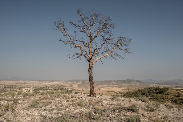 トップランキング「Climate Change Warnings As Southern Spain's Deserts Expand Due To Drought」:写真・画像(5)[壁紙.com]