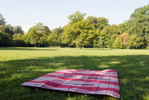 Picnic Blanket「still life of blanket lying on grass in park」:スマホ壁紙(4)