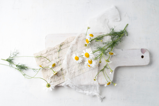 Chamomile「Still life with chamomile flowers」:スマホ壁紙(14)