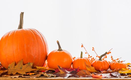 ハロウィン「Still life with pumpkins」:スマホ壁紙(5)