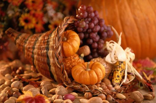 Cornucopia「Still Life of Thanksgiving Harvest」:スマホ壁紙(17)