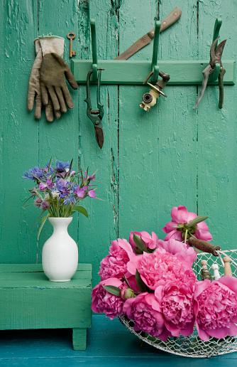 カーネーション「Still life with garden flowers and different gardening tools」:スマホ壁紙(19)