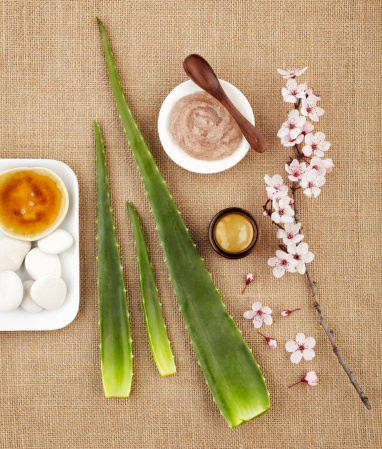 Cherry Blossoms「Still life with aloe vera, honey, sugar scrub and flower」:スマホ壁紙(12)