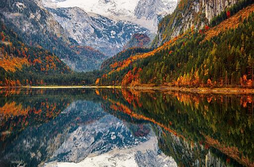 Dachstein Mountains「Autumn reflections on lake Gosausee in Salzkammergut, Austria」:スマホ壁紙(3)