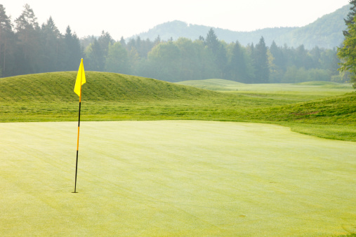 Sports Flag「Golf green」:スマホ壁紙(14)