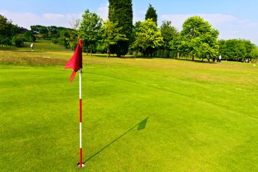 Putting - Golf「Golf Green」:スマホ壁紙(2)