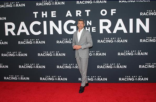 "El Capitan Theatre「Premiere Of 20th Century Fox's ""The Art Of Racing In The Rain"" - Arrivals」:写真・画像(13)[壁紙.com]"