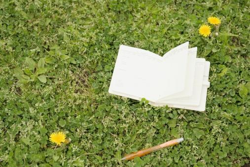 Diary「Diary in a field」:スマホ壁紙(4)
