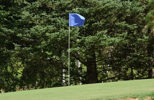 Golf Links「Flagstick on golf course with trees」:スマホ壁紙(15)