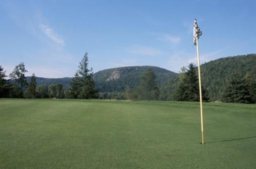 Golf Links「Flagstick on golf green」:スマホ壁紙(7)